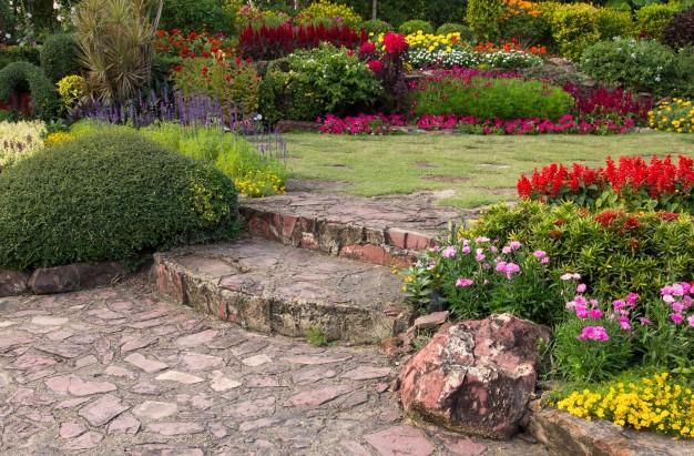 flor-colorida-jardin_1373-544