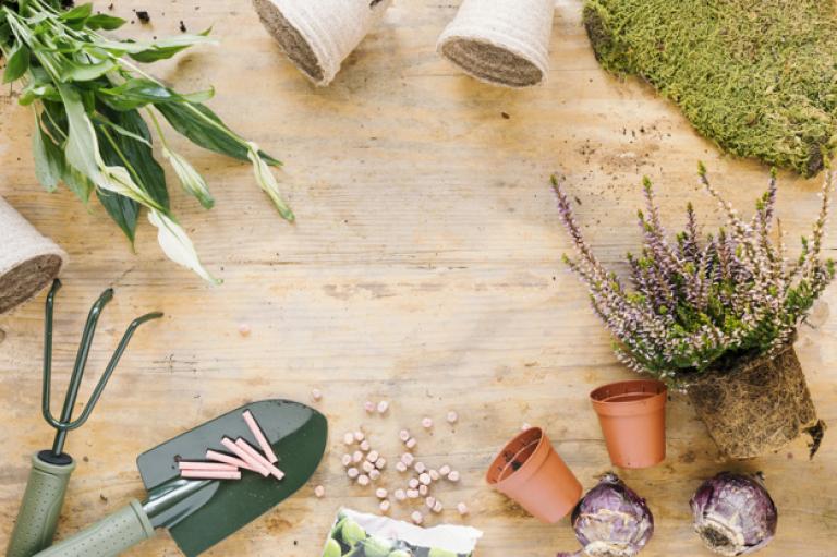 herramientas-jardineria-planta-maceta-cesped-cebolla-semillas-sobre-tabla-madera_23-2148044491