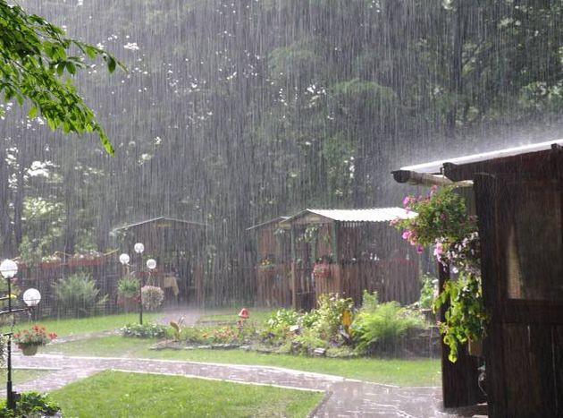 tips-jardin-lluvia-epoca_lluviosa-cuidados_PERIMA20140617_0004_5